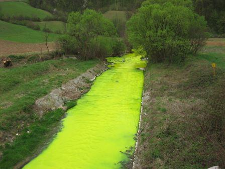 Rivers - green pollution