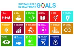 UN 17 Sustainable Development Goals
