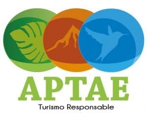 APTAE joins the IRF as an Associate member