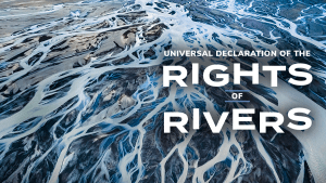 A wave of new support for the Rights of Rivers